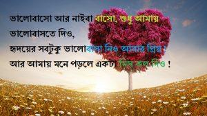 Bangla misty premer sms
