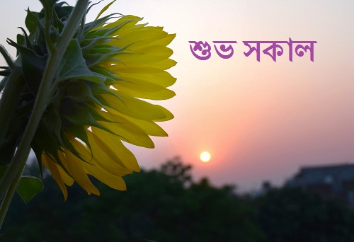 bangla shuvo sokal sms