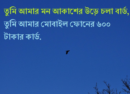Bangla funny love quote for wife