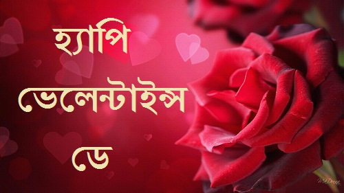 valentines day bangla sms image