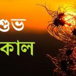 shuvo sokal শুভ সকাল