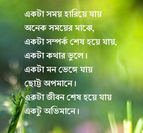 Bangla status about life sad