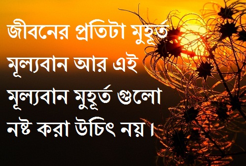 Bangla status about life jibon