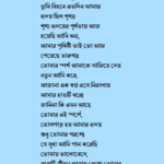 bangla romantic poem