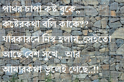 bengali shayari photo picture