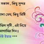 happy new year sms bangla font