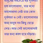 valobashar bangla status