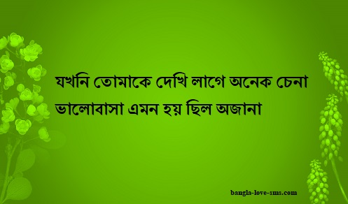 bangla picture with quote