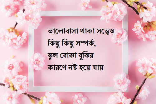 Best bangla koster picture